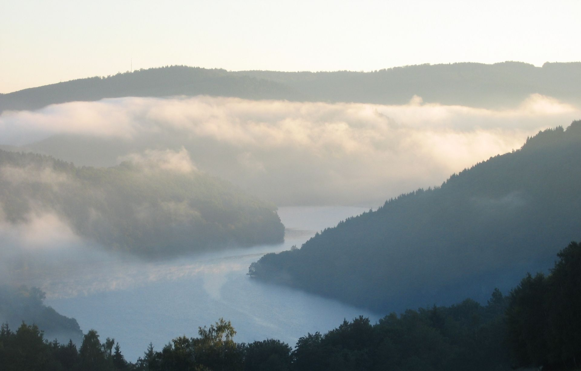 Rursee im Nebel, Eifel
